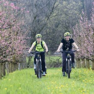 Young couple cycling with rental e-bikes in the Vipava Valley, Slovenia