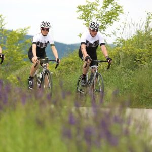 Group of friends road cycling in the Vipava Valley, Slovenia.